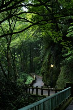Minoo Park, Osaka, Japan | by Sergio A. S.
