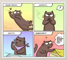 The one about cat logic | Catsu The Cat