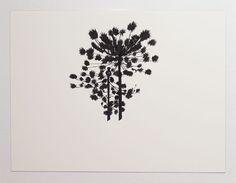Araucaria Art Inspo, I Tattoo, Tatoos, Illustration, Body Art, Ink, Drawings, Poster, Photography