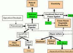 Anaerobic_Digestion_Advantages