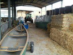 Hungary lane farm