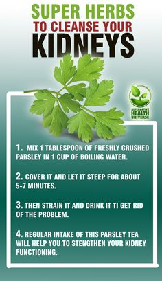 Super Herbs to Cleanse the Kidneys. #healthycleanse