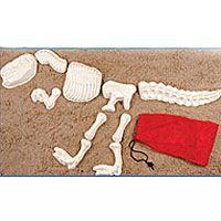 Beach Toys & Sand Toys