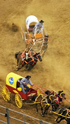 Houston Rodeo - Chuck Wagon Racing, this is my favorite part besides barrel racing!!!