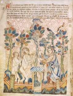 From the Holkham Bible Picture Book of c.1320-30. God, with fingers raised in admonition, forbids the fruit of the tree in the earthly paradise, an enclosed garden surrounded with battlements. God points to the apple tree, and already in its topmost branches is the pelican piercing her breast to feed her young with her blood. This image of self-sacrifice for others ('the pelican in her piety'), is a traditional type or symbol of Christ. It also alludes to another tradi