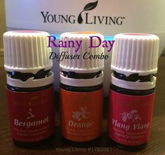 Rainy Day Diffusing Combo with Young Living Essential Oils. Fight the rainy day blues with this uplifting blend #ylangylang #bergamot #orange