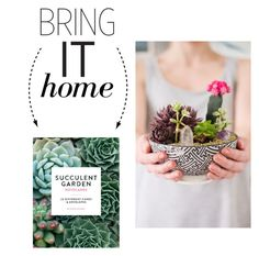 """Bring It Home: Chronicle Books Succulent Garden Notecards"" by polyvore-editorial ❤ liked on Polyvore featuring interior, interiors, interior design, home, home decor, interior decorating, Chronicle Books and bringithome"