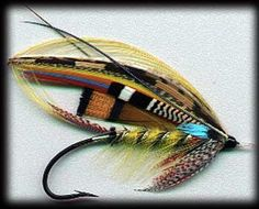 a colorful and wild fishing flies