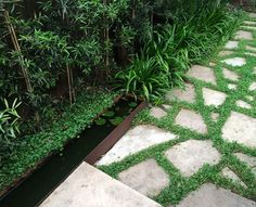 Formed Gardens provides you with a complete range of landscape services including design, construction & maintenance. We have an experienced team of landscape architects, project managers and qualified tradesmen to cater for your project