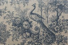 Peacock Toile Paon Canvas