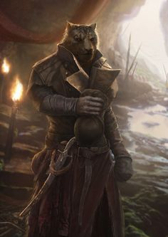 Каджит,TES расы,The Elder Scrolls,фэндомы,TES art,Skyrim