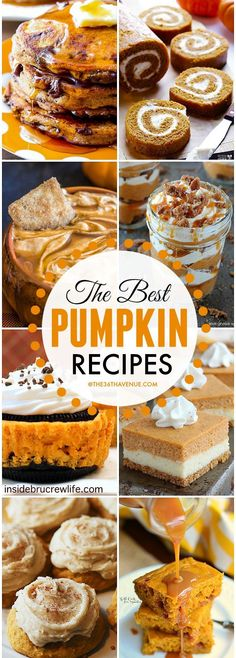 What's on the menu tonight? Pumpkin please! Enjoy this seasonal favorite while you can with these delicious recipes,