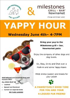 yappy hour is a fun event for you and your pooch don 39 t