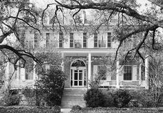 Mulberry Plantation (Kershaw County, South Carolina).jpg home of James Chestnut and Mary Boykin Chestnut 1st cousin 3x removed