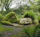 living sculptures Built with mud, rocks, and plants,
