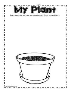 Planting Worksheets for Kids. 20 Planting Worksheets for Kids. Animal and Plant sorting Preschool Science, Preschool Lessons, Kindergarten Worksheets, Worksheets For Kids, Science For Kids, Science Worksheets, Preschool Class, Plant Lessons, Planting For Kids