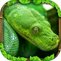 Snake Simulator by Gluten Free Games Simulation Theory, Snake Photos, Silverback Gorilla, Earth Song, Giant Tortoise, Beautiful Snakes, Ball Python, Game App, Free Games
