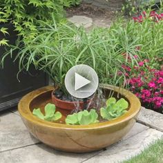 Looks REALLY easy!  I'm going to do it inside. Watch Create a Container Water Feature in the Better Homes and Gardens Video