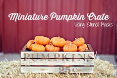 Miniature Pumpkin Crate using Hazel and Ruby stencil masks