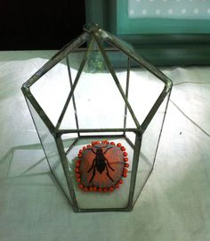 Broche insecte by Le Bazar - Mon stand au Maska (Castera Verduzan) le 17/07/2016