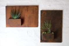 Wall planters for your indoor (or outdoor) plants. Pictured here: The Atwater Village garden shop Potted recently introduced City Planters, indoor-outdoor containers made of steel hand-finished in a rustic rusted patina.