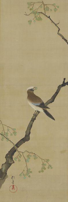 Sakai Hoitsu Birds and Flowers of the Twelve Months