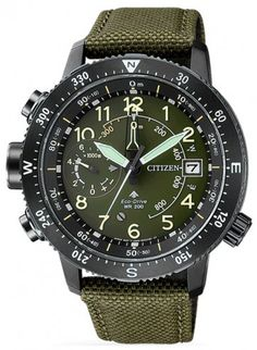 Citizen Promaster Eco-Drive Compass Altichron Multifunction Watch BN4045-12X