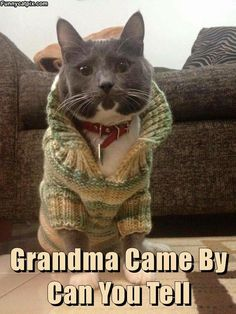 Good ole Grandma...you look AWESOME,LOL!!!