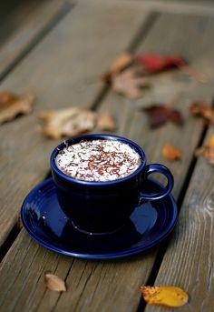 Hoe haal ik dit jaar de herfst in ons eigen huis? Veel natuur producten uit het bos, schapenvellen, kussens en warme plaids!