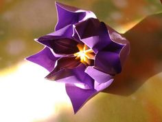 Origami flower  folded  by  me/ Video tutorial  here http://www.youtube.com/watch?v=r5eeJScdEQ4#t=270