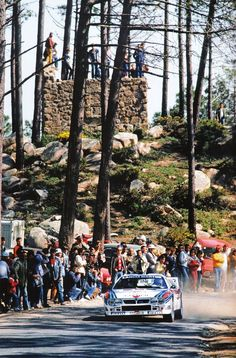 Born in the turbo era. Hill Climb Racing, Road Racing, Rally Raid, Classic Race Cars, Martini Racing, Lancia Delta, Classic Italian, Car And Driver, Toyota Celica