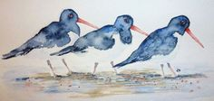 Laura Moore Watercolour Art : Oyster Catchers in Watercolour – Developing an Idea Oysters, Catcher, Watercolor Art, Original Paintings, Sculptures, Birds, Watercolors, Prints, Craft Ideas
