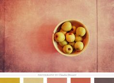 Color Inspiration Daily: 08. 06.12 - Home - Creature Comforts - daily inspiration, style, diy projects + freebies