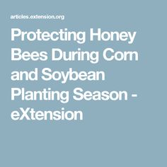 Protecting Honey Bees During Corn and Soybean Planting Season - eXtension