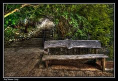 Public Bench III by *amassaf on deviantART