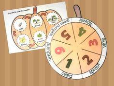 Pumpkin Life Cycle Fold and Learn