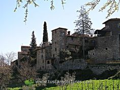 View of the stone medieval hamlet of Montefioralle. Tuscany