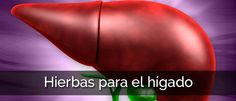 Hierbas para el hígado