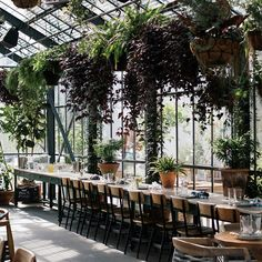 Commissary - In a photogenic greenhouse at The Line Hotel, Roy Choi's Commissary stands out among neighboring Koreatown office buildings. While waiting for a table, head to the bar for a drink and jam out to the DJ's playlist. Every weekend, the place is packed with couples and It girls snapping pictures of the overflowing breakfast buffet table. Be sure to end your outing with a peek at the rooftop pool.3515 Wilshire Boulevard, Los Angeles