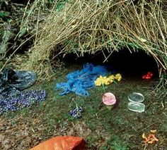 """Bower Bird Nest - this amazing  bird builds this intricate nest, and then scatters little """"gifts"""" in front of it to attract a mate. The color blue is favored by these birds."""