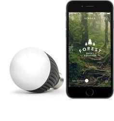 Misfit Bold - Die Lampen, die mit Deinem Smartphone sogar ohne Hub zur Steuerung auskommen!