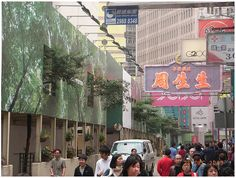 Hoarding on Causeway Bay in Hong Kong, protecting the trees, and integrating them as part of the advertising.