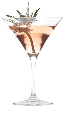 50ml Caorunn Gin 20ml Glenlivet 20ml raspberry gomme 1 rosemary sprig Stir all liquid ingredients in a boston and strain into a chilled martini glass, rim the glass with the rosemary sprig and discard Garnish with a thistle.