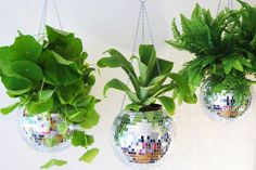 Disco Ball Plant Hangers by DiscoBallPlantHanger on Etsy