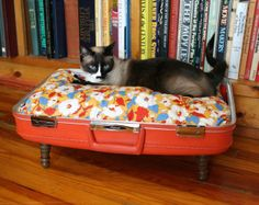 Old Suitcase Transforms Into A Cute Cat Bed: Casual Old Suitcase Cat Bed ~ laurieflower.com Furniture Inspiration