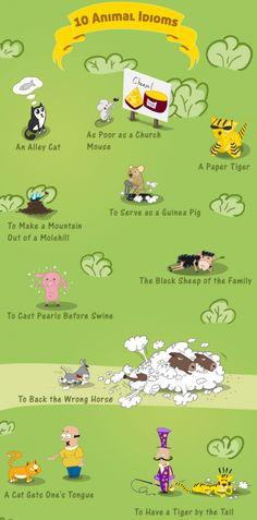 Falibo - Learn English As a Second Language - Animal Idioms