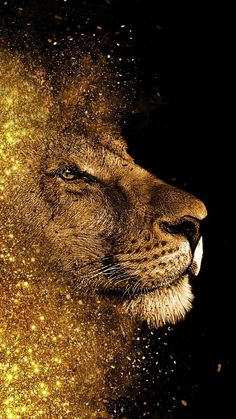 Lion painting art work,mobile wallpaper,animal,terrestrial - Best of Wallpapers for Andriod and ios Lion And Lioness, Lion Of Judah, Leo Lion, Lion Love, Lion Painting, Lion Pictures, Galaxy Wallpaper, Lion Wallpaper Iphone, Gold Lion Wallpaper