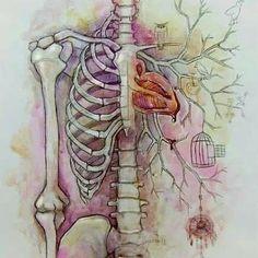 Inside the body...