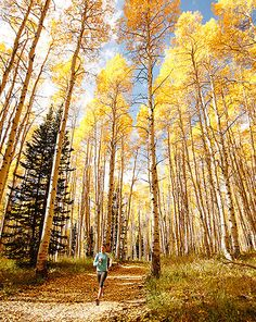 Fall running, there's nothing like it!