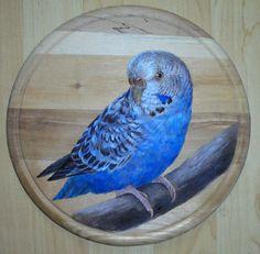 Andulka vlnkovaná, akrylové barvy na prkénku  Budgie on the kitchen board